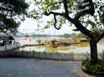 惠州西湖一景